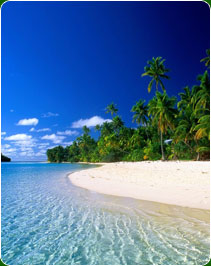 Kerala Beaches Tour Package